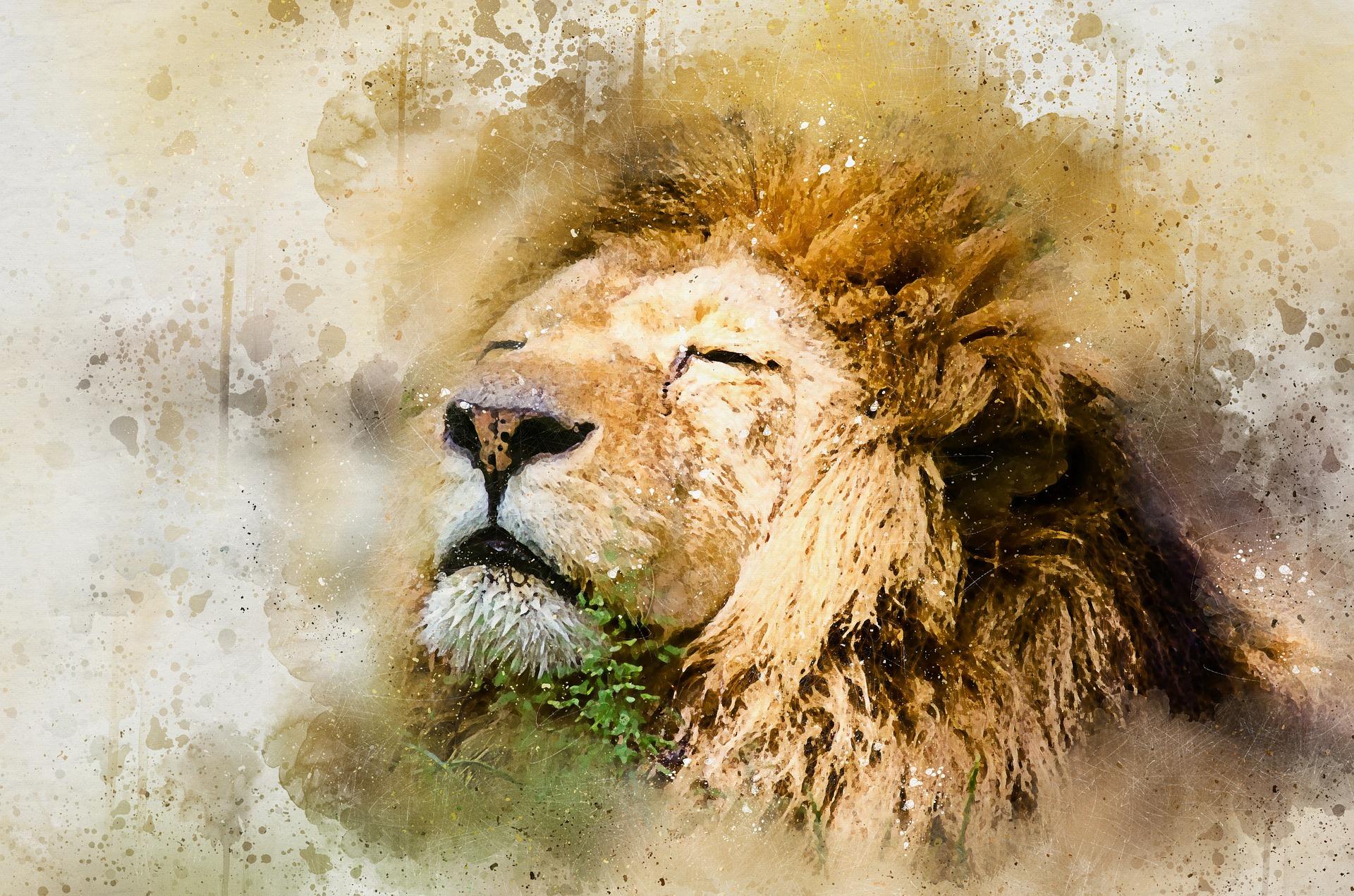 【タルムード】骨が引っかかったライオン (投資や交渉)