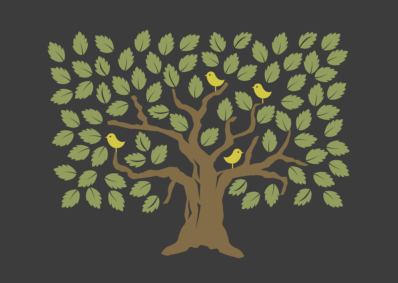 【タルムード】木のおびえ (オワコンの考え方)